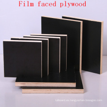 Madera contrachapada con revestimiento de madera de álamo negro / Contrachapado marino / Contrachapado contrafuego / Contrachapado impermeable