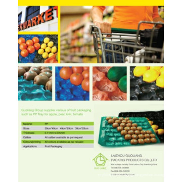 29X39cm, 29X49cm, 39X59cm Fruit Use Any Color Available PP Thermoformed Plastic Tray Packaging Fruit Use for Protection and Display