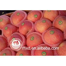 manzana roja fuji