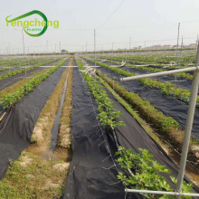 Black ground cloth weed barrier mat