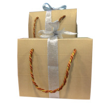 Printed Color Paper Shopping Gift Bag with Ribbon