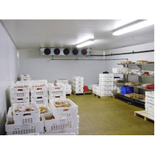 Commercial / Industrial Cold Room / Blast Freezer para venda