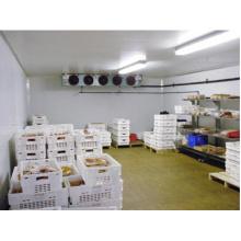 Горячий Продавать Холодной Комнаты / Холодильных Камер/Холодильник