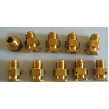 Custom Brass Precision CNC Turning Machined Part (ATC192)