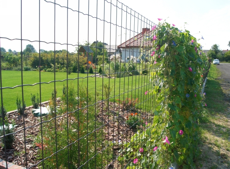 High Tensile Euro Fence
