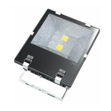 Projecteurs d'intégration certifiés 10W-100W