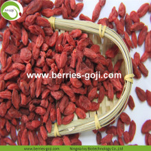Factory Supply Fruits Premium Authentische Goji Beere