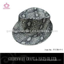 Viejos sombreros del sombrero de Fedora de la moda