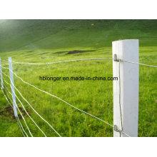 Campo hierro cerca/Prado alambrada de malla/de las ovejas cerca del ciervo