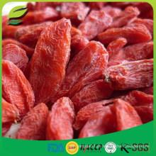 Alimentos saudáveis Wolfberry Natural / Nature goji berry