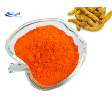 Curcumin price / Curcuma powder / Turmeric Powder