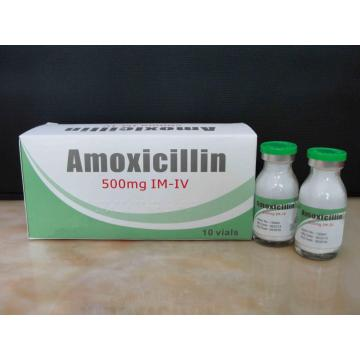 Reasonable price for Macrolide Antibiotics Amoxicillin for Injection BP 500MG supply to Antigua and Barbuda Manufacturer