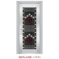 Puerta de acero inoxidable para exteriores (SBN-6705)