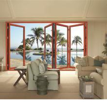 Puerta elegante de alta calidad de lujo de la puerta de aluminio de la casa Bi plegables puertas (FT-D75)