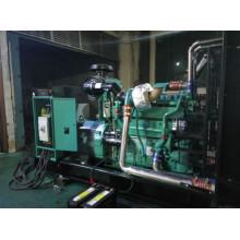Cummins Generador Diesel 1000W