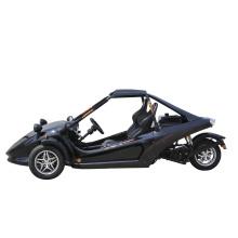 Фабрика цена ATV 250cc 3 колеса Quad трехколесном велосипеде ATV гонки