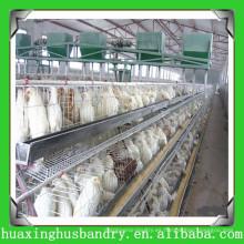 China hizo el acoplamiento de alambre del gallinero del gallinero durable para la casa de gallina