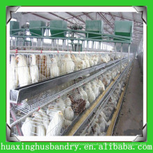 China made durable chicken coop wire mesh for hen house