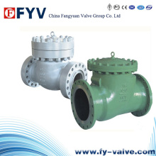 API6d Wafer Lift/Swing Check Valves