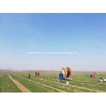 Riego de carrete de manguera de 250 metros de longitud