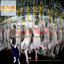 Meat Processing Machine in Poultry Farming House with Prefab House Design and Construction