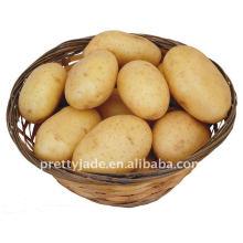 Chinese fresh yellow potato