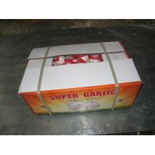 Embalaje de cartón Exporing ajo blanco fresco