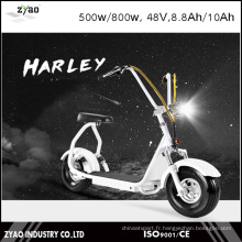 City Mobility Citycoco 800W Mini-essuie-glace électrique sans brosses adultes 2 roues Motocyclette électrique