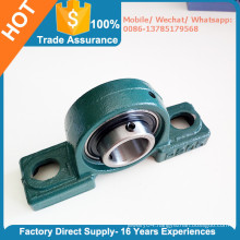 Stainless Steel Bearing UCP205-16 with Cast Iron Housing