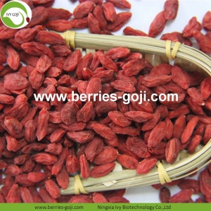 Factory Wholesale Nutrition Naturlig Ningxia Goji Berry