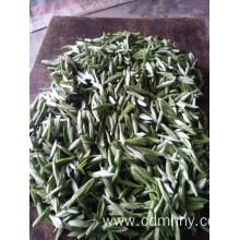 China for Green Tea Green tea wholesaler usa export to Antigua and Barbuda Importers