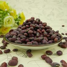 2015 nuevas semillas de frijol rojo frijol de alta calidad para la venta