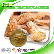 Manufacturer Supply 30% Polysaccharide Agaricus blazei Extract