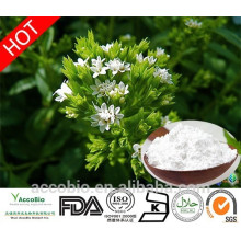 High Quality 100% Natural Organic Stevia Leaf Sugar Plant Extract Wholesale Price For Sweetener