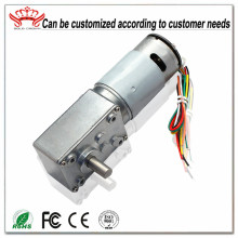 Worm Gear Drive Motor With Magnetic Encoder