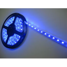Warm White 5050 SMD 300PCS 5m Length LED Strip Light (Non-waterproof) , Green Color, Blue Color Available