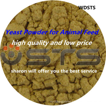 Yeast Powder for Animal Feed Poultry Feed (High Quality And Low Price)