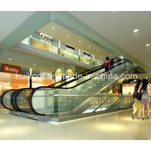 Public Escalator with Step Width 800mm