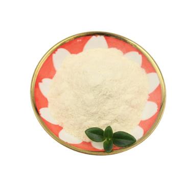 OEM High Quality 50 Billion Cfu  Food Additives Freeze-Dried Probiotic Powder Lactobacillus Delbrueckii
