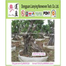 Popular hasta árbol de jardín de invernadero de plantación bolsa