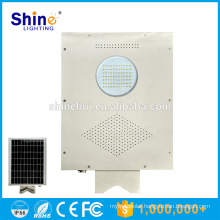 Factory Supply Chinese 8W Integrated Led Solar Garden Light with Pole