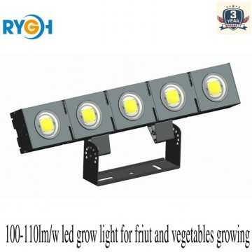LED Flood Light With MW HLG Diver 5years