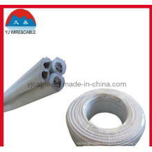 Spt Cable Lighting Wire 18 AWG Cable 12 AWG Cable CCA Wire Wire for Hanging Lamp Spt Wire