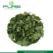 Wholesale Moringa Dried Leaves for Weight Loss