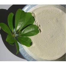 Magnesio orgánico Mg quelato fertilizante