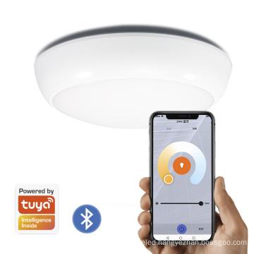 3CCT 16w  IP54 smart ceiling light