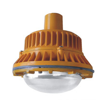 Induction Explosion Proof Light