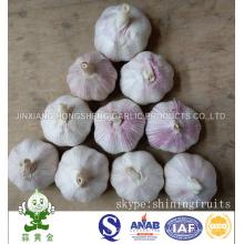Нормальный белый чеснок Новый урожай 2016 от Jinxiang Китая