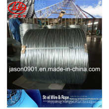 Galvanized Steel Wire (factory)