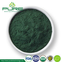 High Quality broken cell-wall Organic Chlorella Powder